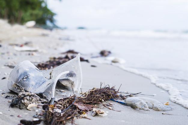Mar De Plástico: Entre El 60 Y 80% De La Basura De Los Oceános Son Plásticos